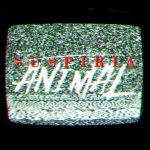 Suspiria Animal Cover